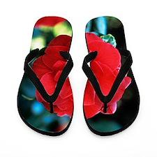 Camellia flower Flip Flops