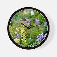 Calliope Hummingbird Wall Clock
