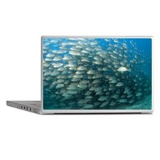 School of fish Laptop Skins