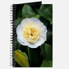 Camellia flower Journal