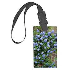 California lilac 'Skylark' flowe Luggage Tag