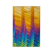 Caffeine crystals, light microgra Rectangle Magnet