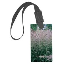 Bush grass (Calamagrostis epigej Luggage Tag