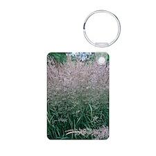 Bush grass (Calamagrostis  Keychains
