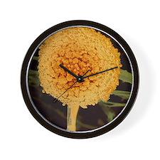 Bread mould Wall Clock