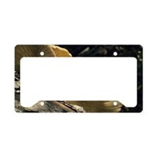 Bracket fungi License Plate Holder