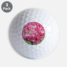 Border carnation (Dianthus 'Sweet Sue') Golf Ball