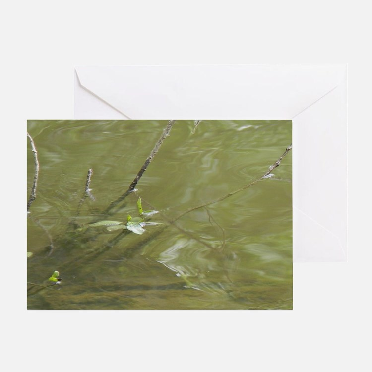 River Branches Greeting Card