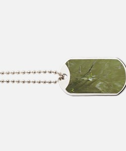 River Branches Dog Tags