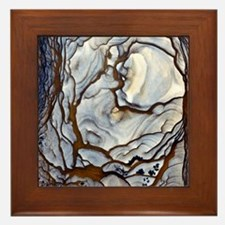 Blue Biggs Jasper stone Framed Tile