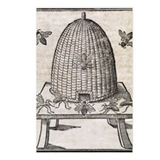 Bees and beehive, 17th ce Postcards (Package of 8)