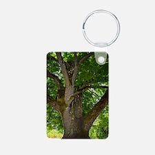 Black walnut (Juglans nigr Keychains