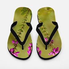 Bell heather (Erica cinerea) Flip Flops