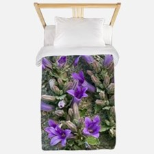 Bellflower (Campanula topaliana) Twin Duvet