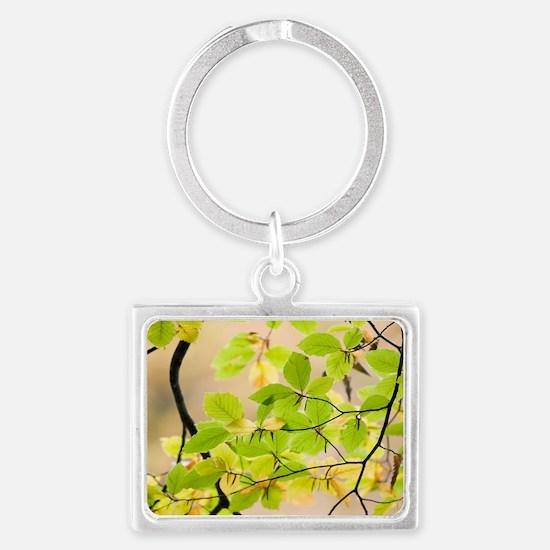 Beech leaves Landscape Keychain