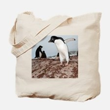 Adelie penguin colony Tote Bag