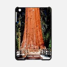 Base of Giant Sequoia 'General Sher iPad Mini Case