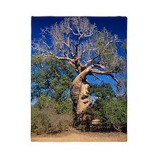 Baobab tree Twin Duvet