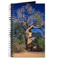 Baobab tree Journal