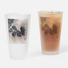 Bacterial antibiotic production Drinking Glass