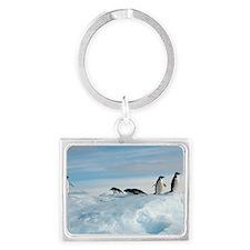 Adelie penguins Landscape Keychain