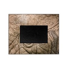 African elephant eye and skin Picture Frame