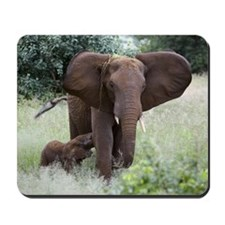African elephants Mousepad