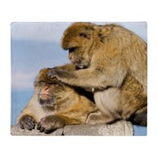 Barbary macaques Throw Blanket