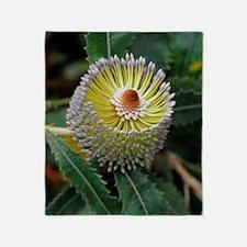 Banksia flower Throw Blanket