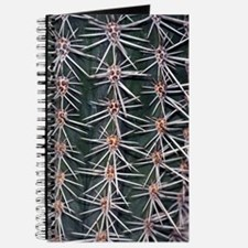 Barrel cactus spines (Ferocactus sp.) Journal