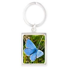 Adonis Blue butterfly Portrait Keychain