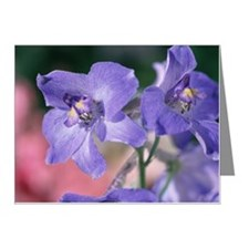Close-up of violet Note Cards (Pk of 10)