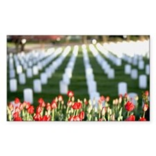 Red tulips at Arlington Nation Decal