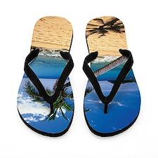 Bent palm tree and footprints on Carlis Flip Flops