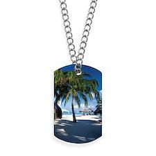 Palm trees and umbrellas on beach on Arub Dog Tags