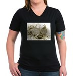 Frillback Pigeons Women's V-Neck Dark T-Shirt