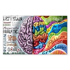 Left Brain Right Brain Cartoon Decal