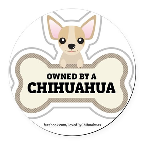 Owned by a Chihuahua Round Car Magnet