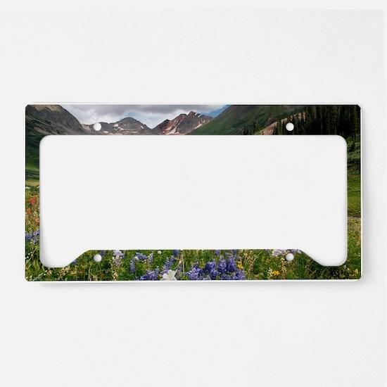 Alpine flowers in Rustler's G License Plate Holder