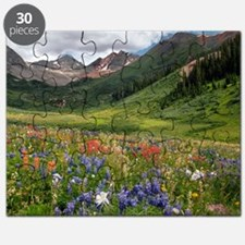 Alpine flowers in Rustler's Gulch Puzzle