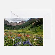 Alpine flowers in Rustler's Gulch Greeting Card