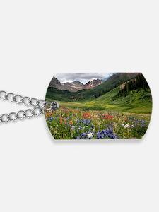 Alpine flowers in Rustler's Gulch Dog Tags