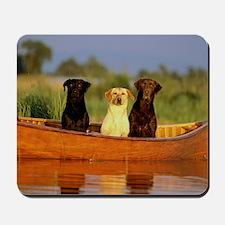 Dogs in a canoe Mousepad