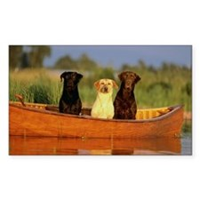 Dogs in a canoe Decal