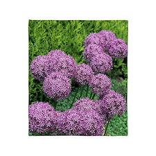 Allium flower Throw Blanket