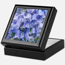Bluebells (Hyacinthoides hispanica) Keepsake Box