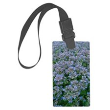 Borage (Borago officinalis) Luggage Tag