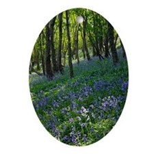 Bluebell wood Oval Ornament