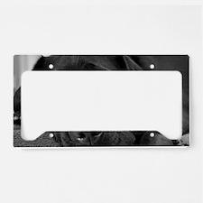 Beautiful Black Labrador License Plate Holder