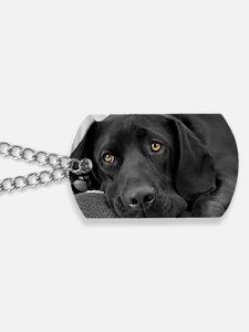 Beautiful Black Labrador Dog Tags